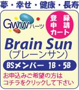 brainsun申請